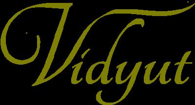 Vidyut's corner