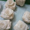 the-white-rose-4214517